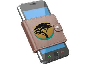 FNB's eWallet Continues to Increase in Popularity