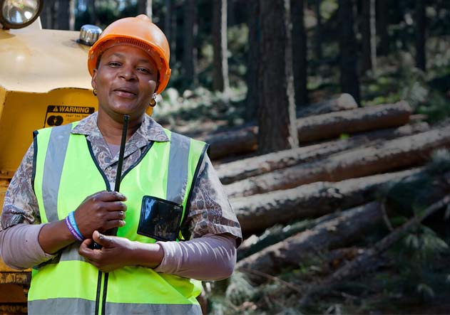 The SAFCOL Forestry Industrialization Conference, 4-5 October 2017